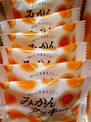 みかんクッキー (1).jpg