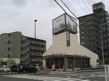 ピソラ ① (2).jpg