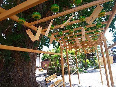 和田神社 (25).jpg