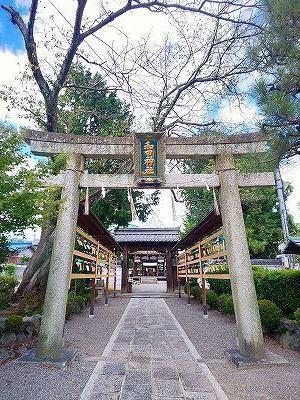 和田神社 (3).jpg