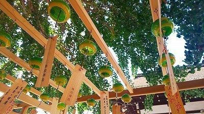 和田神社 (37).jpg