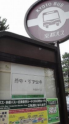 嵐山 (1).jpg