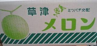 草津メロン (1).jpg