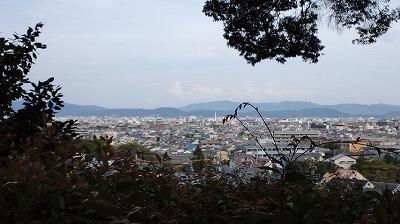 鈴虫寺 (16).jpg