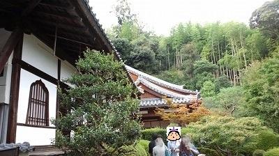鈴虫寺 (8).jpg