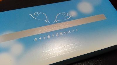 ブールミッシュ天使1000 (2).jpg