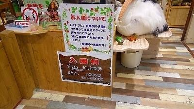IMG_20170321_142830.jpg