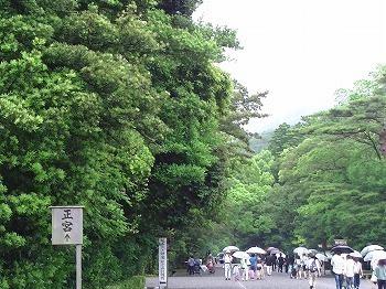 PIC_0081.jpg